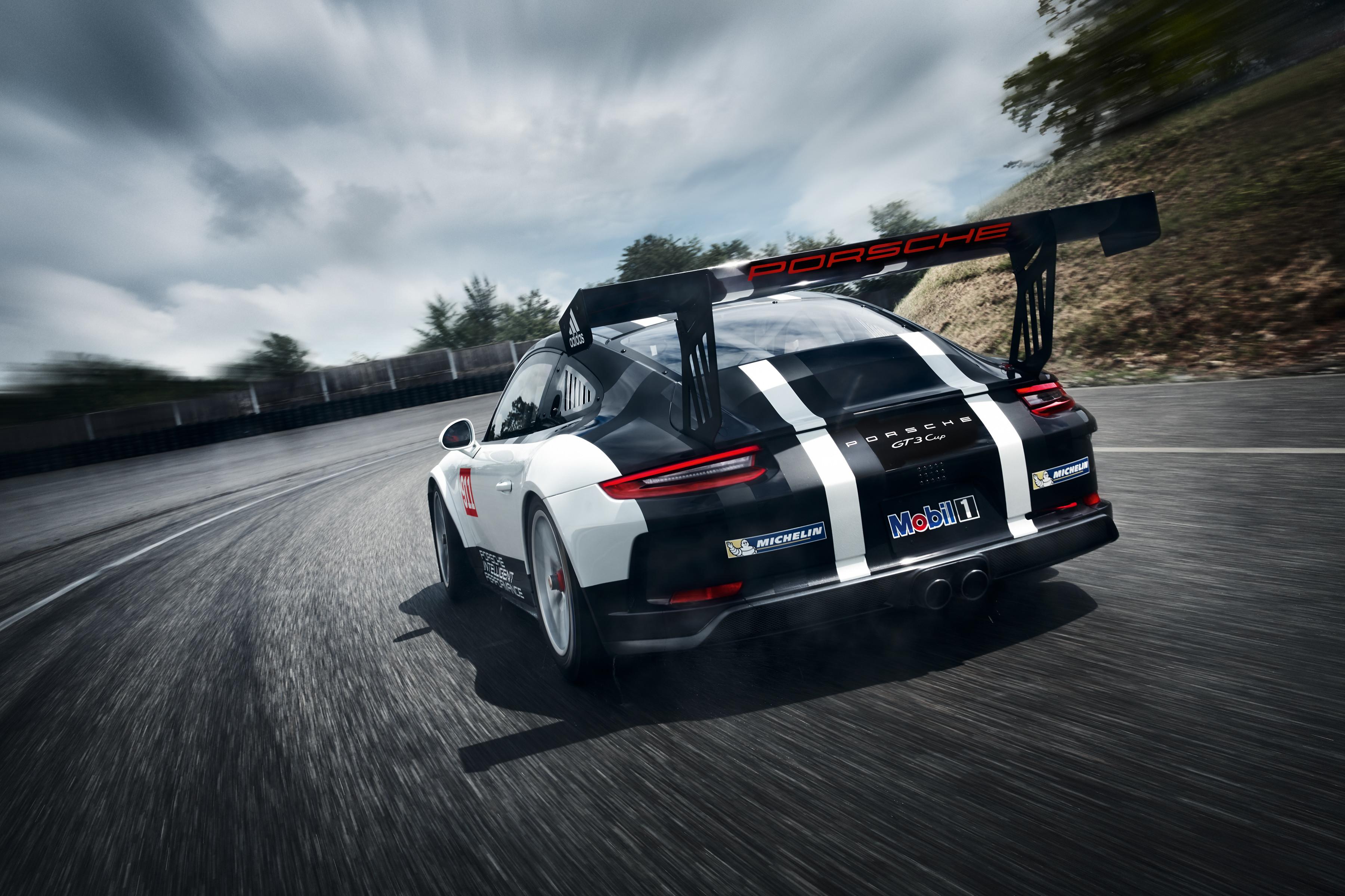 Porsche Cup Mobil 1 afbeeldingen den hartog