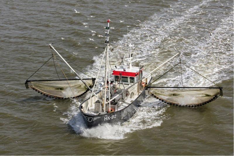 Visserij en duurzaamheid